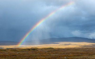 Wie der Regenbogen entstand